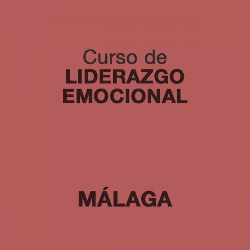 Curso de Liderazgo Emocional en MÁLAGA